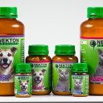 nekton-dog-cat-gruppe