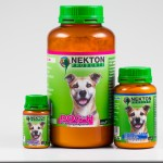 nekton-dog-gruppe